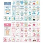 30 Baby Girl/Boy Memorable Moments Milestone Cards £2.84 Delivered