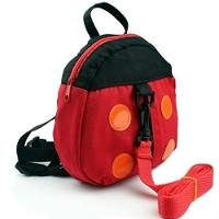Ladybug harness and bag £2.54 delivered