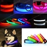 LED dog collar from £2.49 - £4.49 delivered